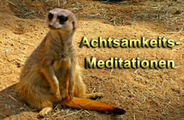 Achtsamkeits-Meditation zum Download